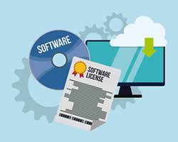 software licensing management